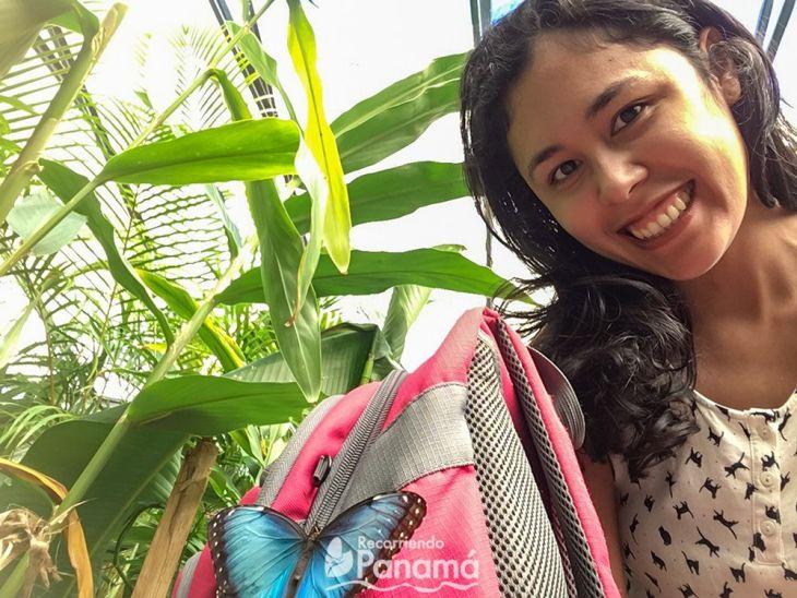 Mariposa en mi mochila.