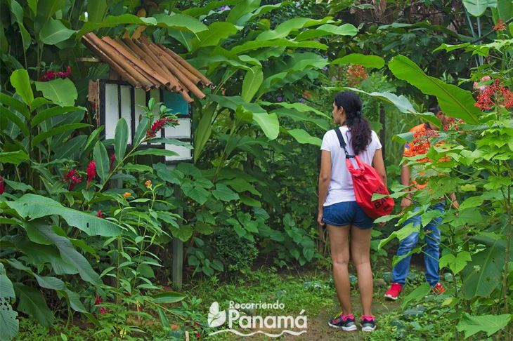 At the butterfly's garden. Agro Tourism