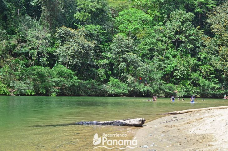 The Little Beach of Chagres River