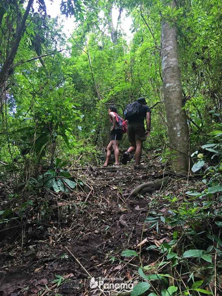 Saca Lágrimas Waterfall trail