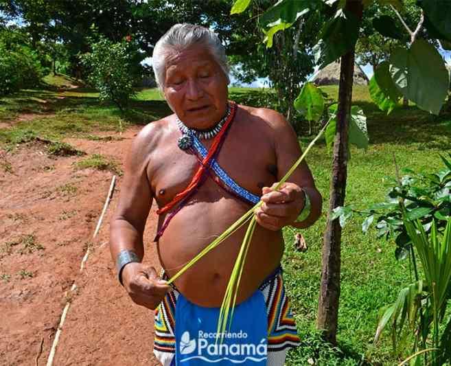 Botanical of Emberá Querá Community