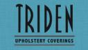 triden distributors logo