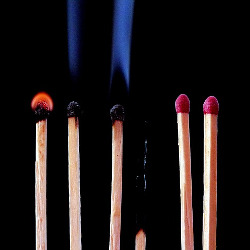 Six matches in different degrees of burning. One is entirely burnt out.