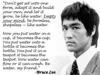 brucelee1 on justruminating men's blog