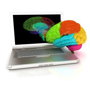 creative three-dimensional model of real human brain and scan on