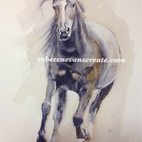 12#workdwatercolormonth 'Bettie'new forest pony