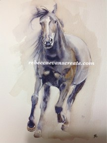 'Bettie' new forest pony, watercolour A4 140 lb cold press