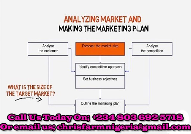Overview Of A Business Plans (We can get one done for you)