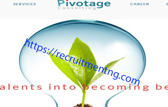 Associate HR Consultant in Pivotage Consulting