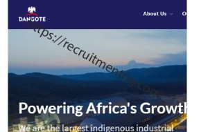 Painting and Insulation Supervisor at Dangote Group