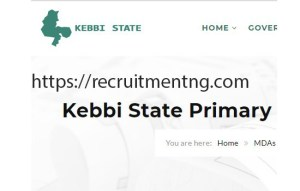 Clinical Mentors at Kebbi State Primary Health Care