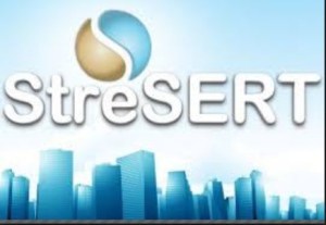 Construction Site Engineer at Stresert Services