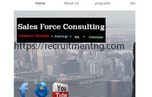 Accountants at Sales Force Consulting