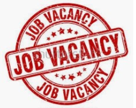 Technical Assistant (Health & Nutrition Services) at Achieving Health Nigeria Initiative