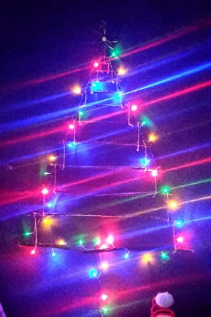 10_sapin_noel_recup_branches
