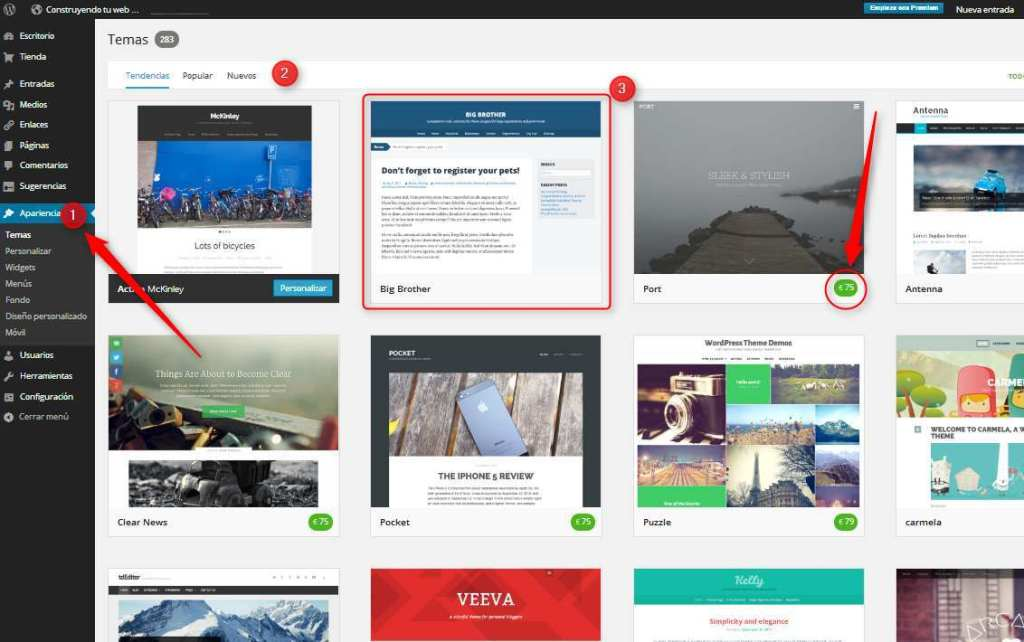 WordPress. Seleccion de temas