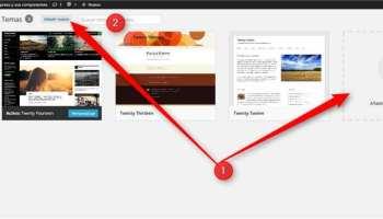 WordPress Temas en instalacion propia