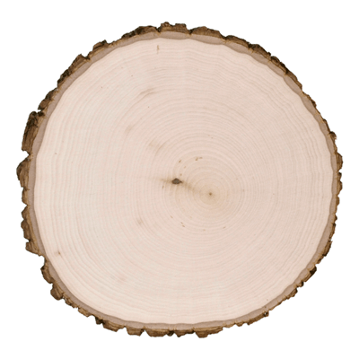 Basswood-Country-Round-Thick-Wood-Burn-39750