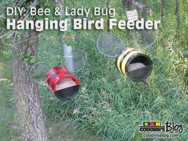 Lady Bug And Bumble Bee Bird Feeders Recycled Crafts