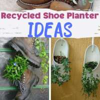 72 recycled shoe planter ideas
