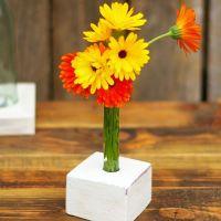 Ein bisschen Farbe in die Wohnung bringen - mit selbstgemachten Vasen