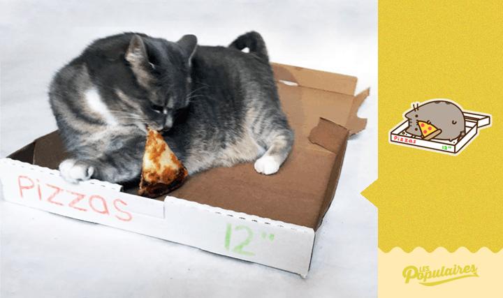 Hombre recrea los stickers de Pusheen Cat con su gato -9
