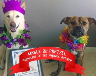 Mabel & Pretzel