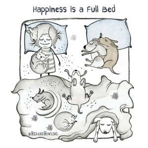 Happiness is a Full Bed – singles edition!