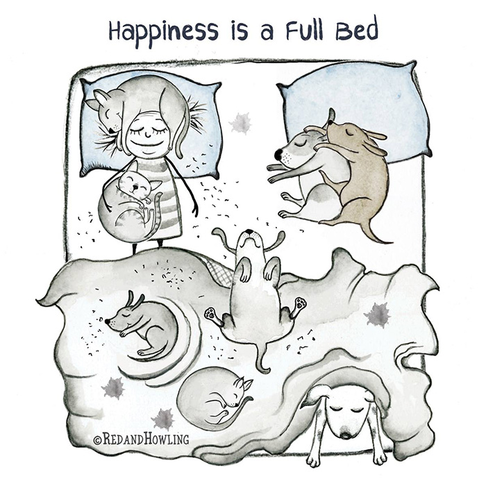 Happiness is a Full Bed - singles edition!