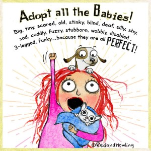 Adopt All The Babies!