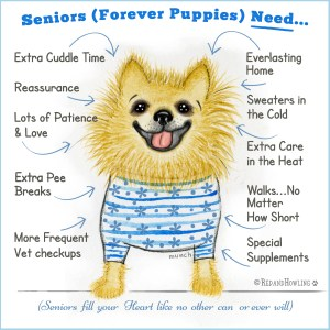 Seniors (Forever Puppies) Need…
