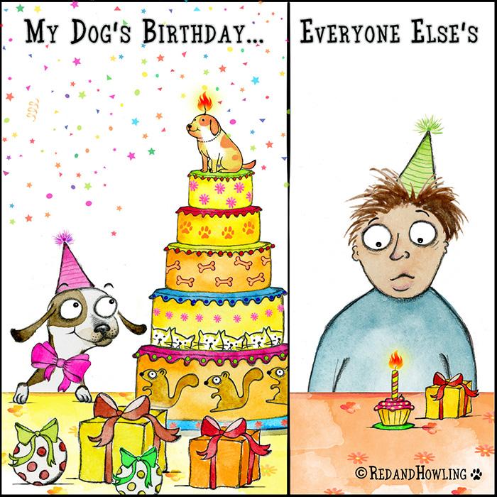 My Dog's Birthday