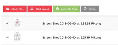 Screen Shot 2018 06 11 at 9.24.50 AM