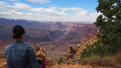 Enjoying the Grand Canyon views