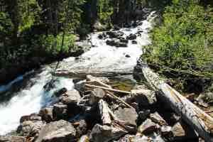 Hiking around Jenny Lake to Hidden Falls