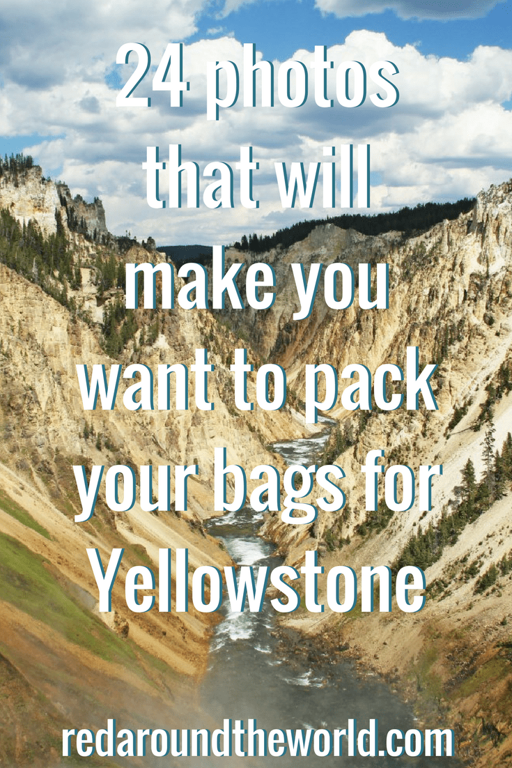 24 photos that will make you want to pack your bags for Yellowstone