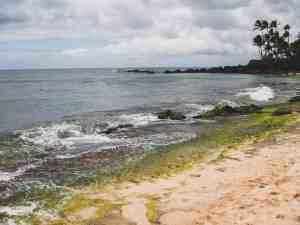 oahu coastline hawaii