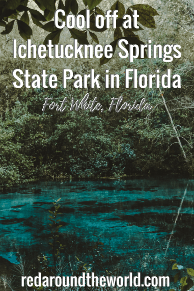 There are plenty of things to do at Ichetucknee Springs State Park in Fort White, Florida. This is one of the best state parks in Florida and one of the best springs in Florida. #florida #gainesville #swimming #travel #summer #statepark #usa
