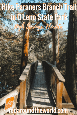 Hike Paraners Branch Trail in O'Leno State Park in Florida. This is one of the coolest state parks in Florida. It's in High Springs, an easy day trip from Gainesville. #florida #hiking #usa #statepark #travel