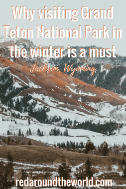 No matter the time of year, Grand Teton National Park is a must-visit. However, winter might be the best time to visit for a totally different park experience. Grand Teton in the winter is great for viewing wildlife and snowshoeing. The main road is closed and hiking is limited, but the crowds are a fraction of what they are in the summer. #wyoming #nationalpark #travel #snowshoeing #grandteton #winter #roadtrip