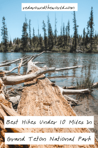 Hiking in Grand Teton National Park is some of the best in the west. These are 20 of the best short hikes in Grand Teton National Park with tips for hiking.