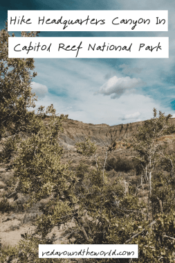 Geocaching in Capitol Reef National Park is a fun day trip. Hike Headquarters Canyon in the Waterpocket Fold and geocache along Notom Road.