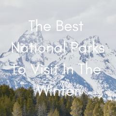 The Best National Parks To Visit In The Winter