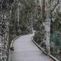 Bird Nerd In The Making At Merritt Island National Wildlife Refuge In Titusville, Florida