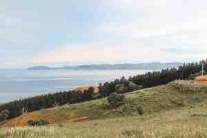coastal view near dunedin new zealand