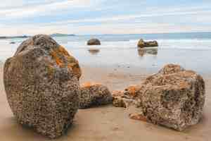 moeraki boulders otago new zealand
