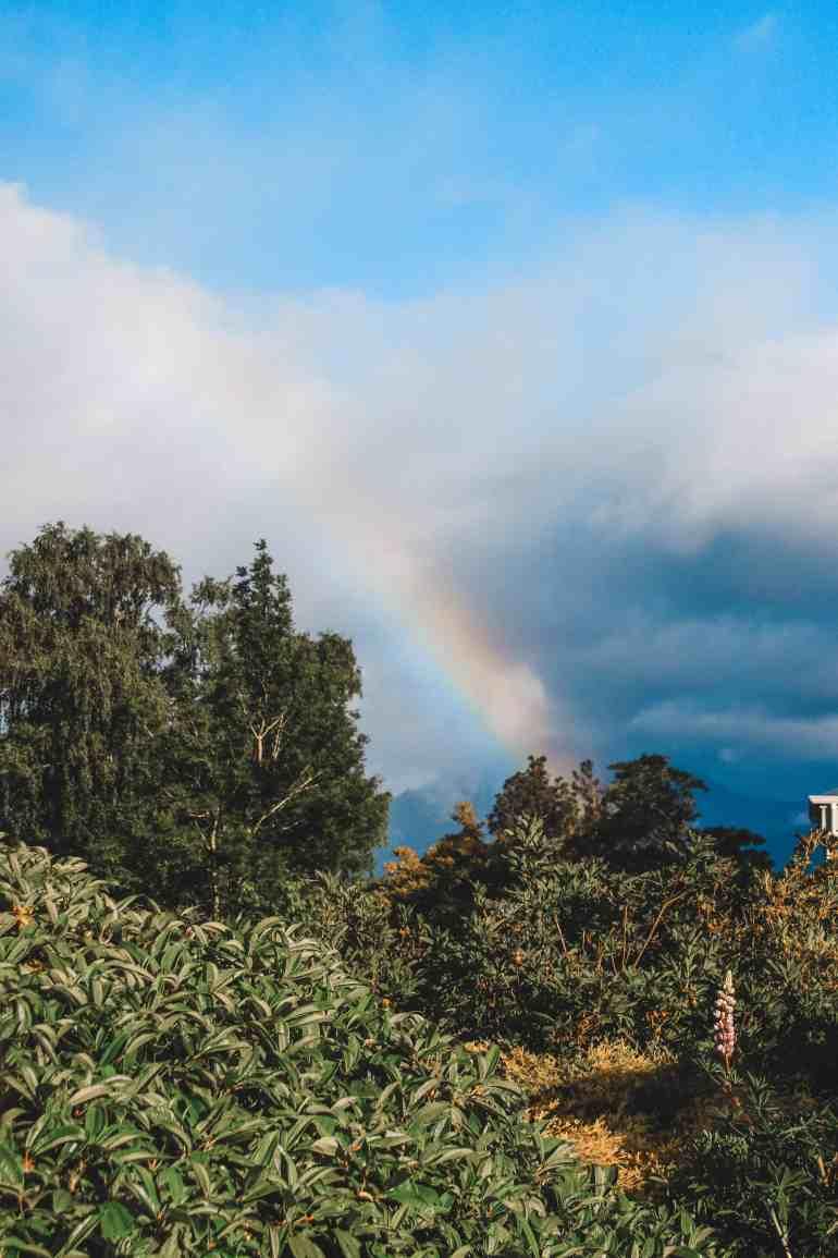rainbow in new zealand