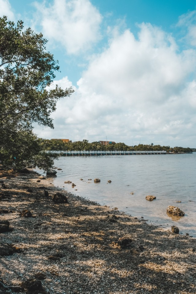 Biscayne National Park: Camping, Tours, And Everything Else You Need To Know