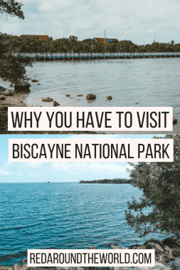 Biscayne National Park is one of three national parks in Florida. Tours at Biscayne let you see a lot of the park. You can snorkel and camp in Biscayne.