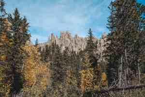 Cathedral spires trail black hills